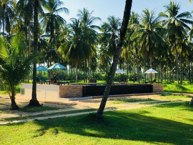 Golden Coconut Resort – Golden Coconut Resort