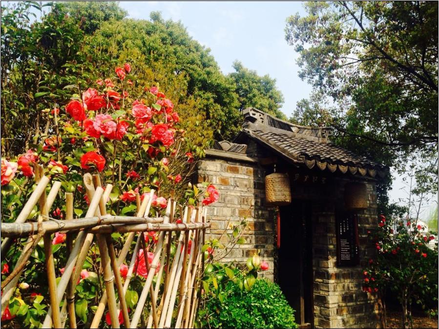 Zhouzhuang Moonlit River In Spring Guzheng Club House