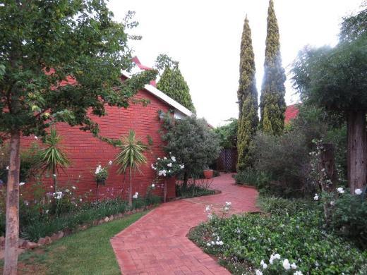 Camelia Guest House
