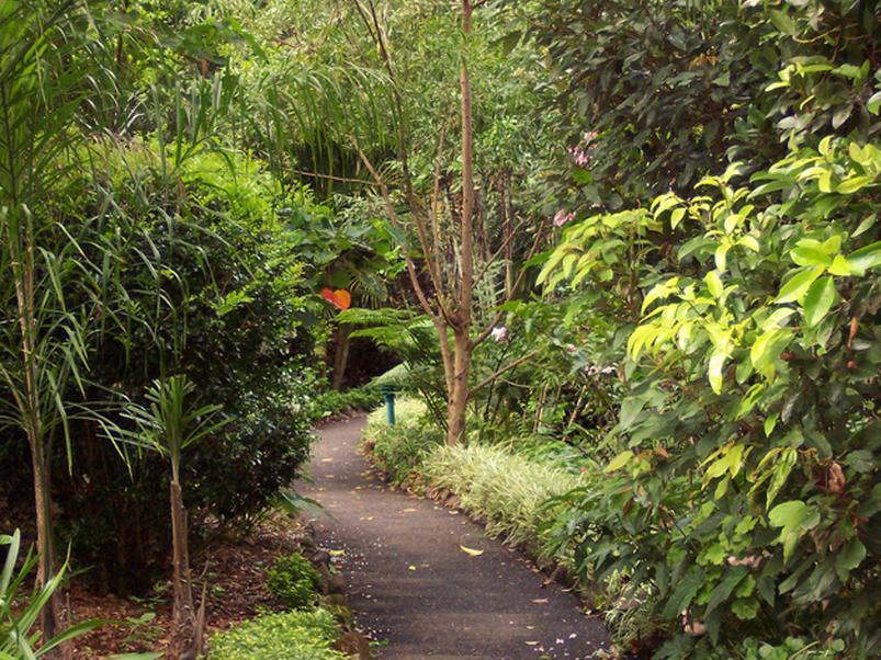 Price The Falls Montville Rainforest Cottages