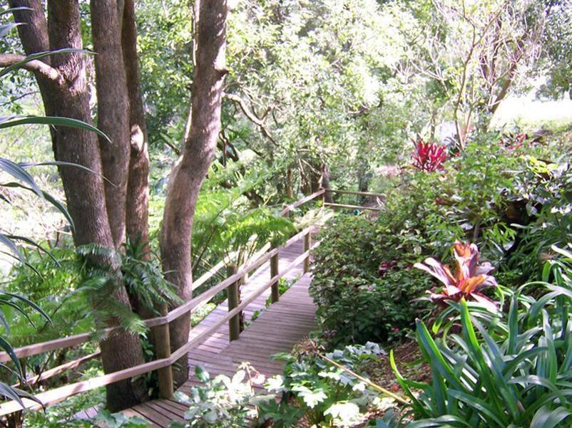 Review The Falls Montville Rainforest Cottages