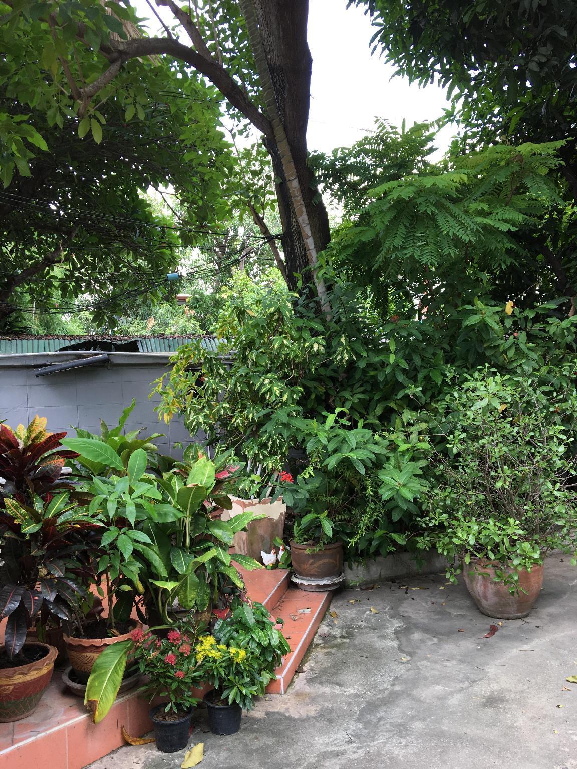 Price Many Trees Hostel