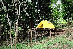 picture 3 of Sinag Community Campsite