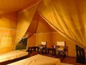 Bagheera Camp Jungle Retreat