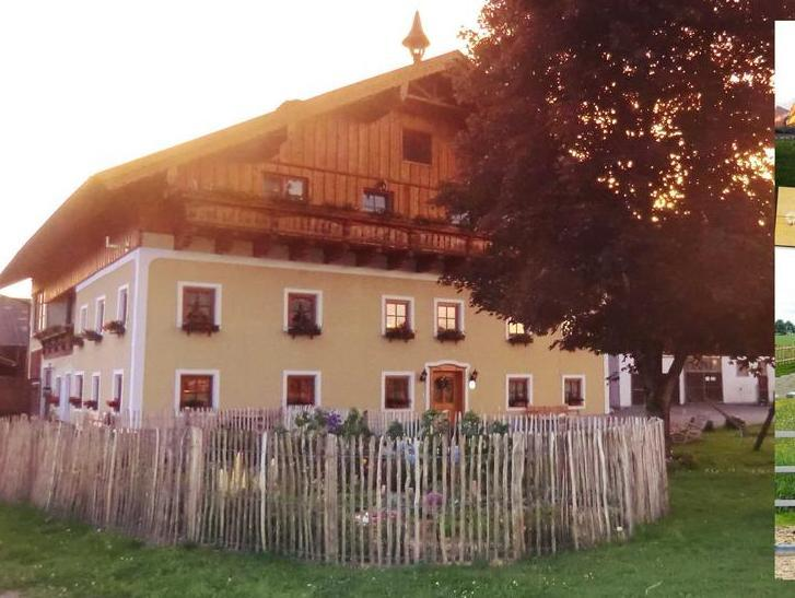 Kinderparadies Bachbauer