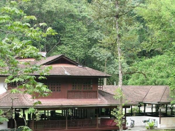 Jungle Lodge Alang Sedayu Kuala Lumpur