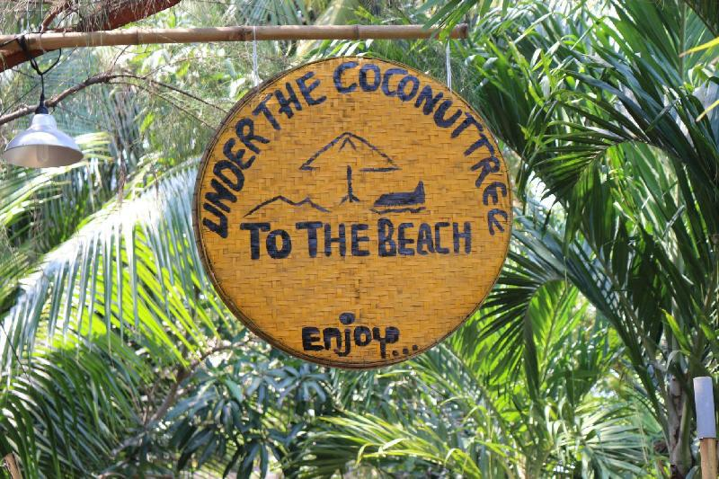 under the coconut tree hoi an homestay in vietnam