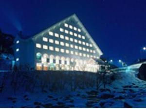 關於層雲峽山景飯店 (Sounkyo Mount View Hotel)