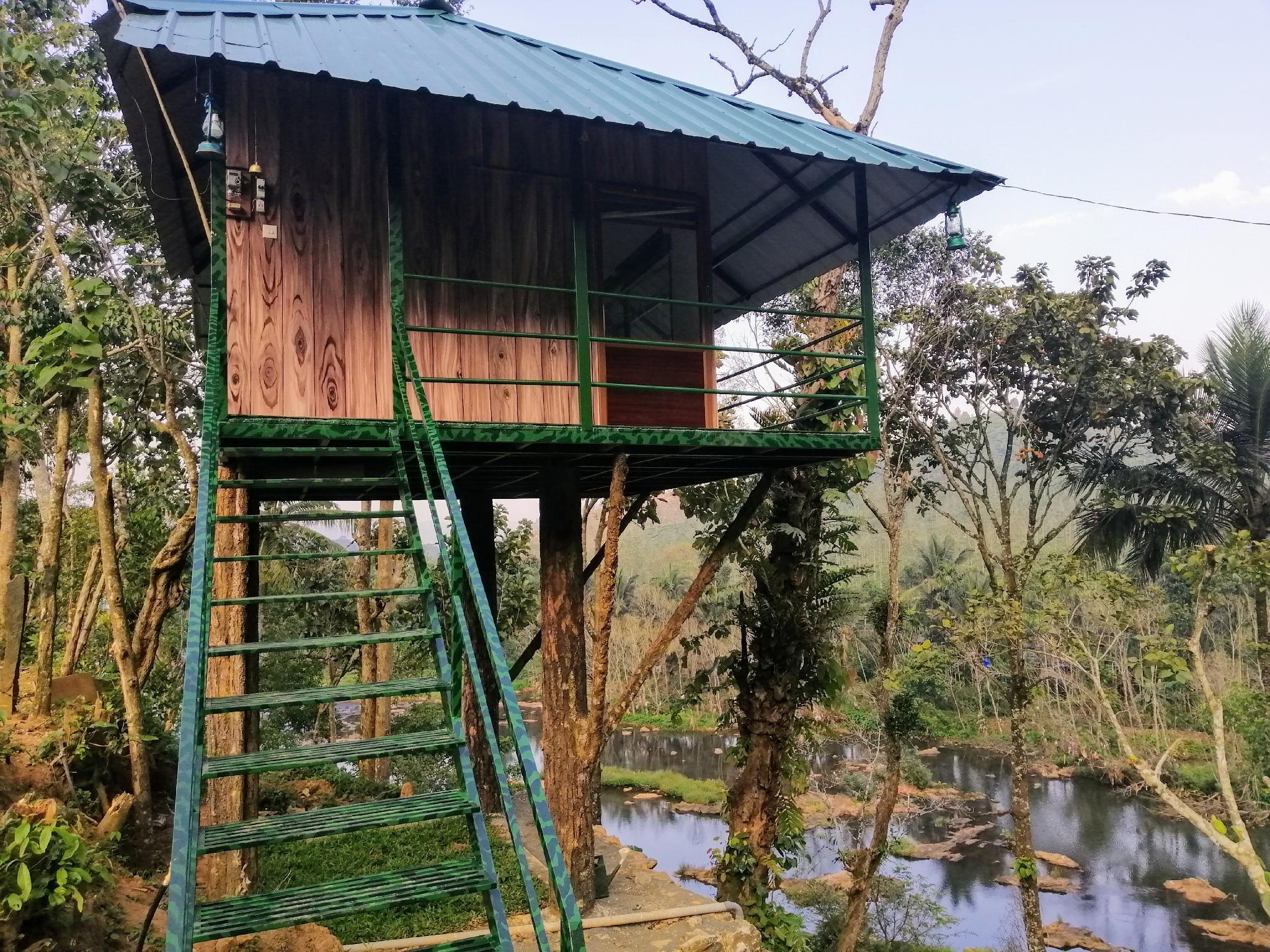 Noahs Nest Tree House