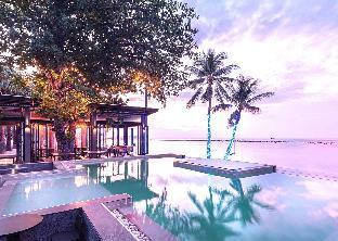 Lub D Koh Samui Chaweng Beach หลับดี เกาะสมุย หาดเฉวง