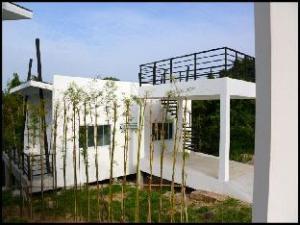 Villa Jungle Livin by Design Square