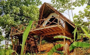 picture 1 of Jungle Bar Cottages
