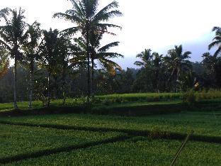 Villa Kemuning