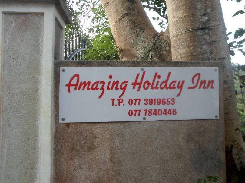 Amazing Holidays Inn