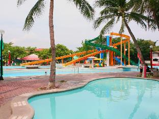Фото отеля Island Cove Hotel and Leisure Park