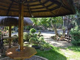 picture 5 of Almas Garden Guest House