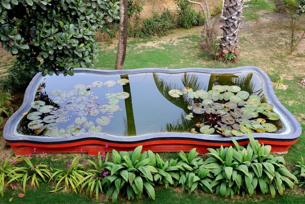 The Garden Bungalow