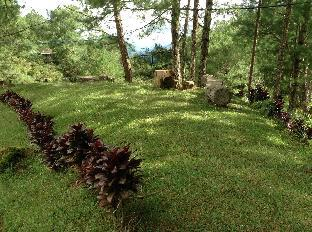 picture 4 of Banaue Ethnic Village and Pine Forest Resort