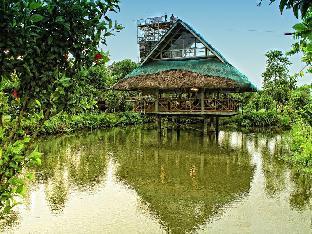 picture 5 of Lola Corazon Leisure Farm