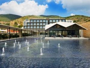 Hotel Marasa Sarovar Premiere Tirupati