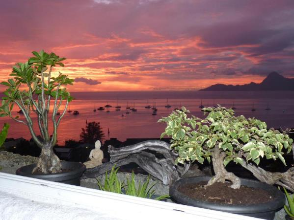 Balcon du Lotus Apartment Tahiti