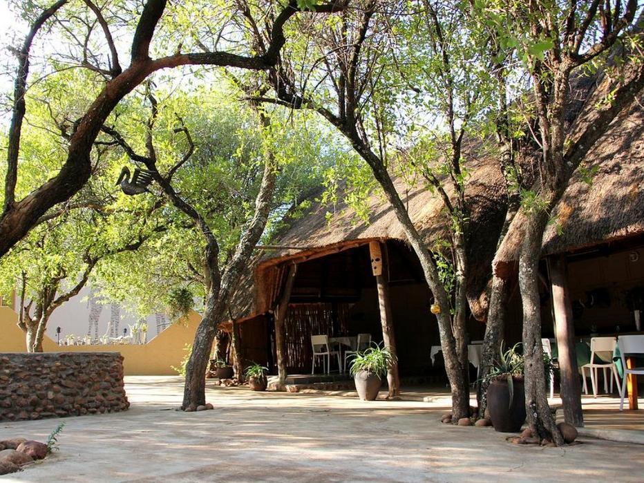 Ukutula Lion Lodge
