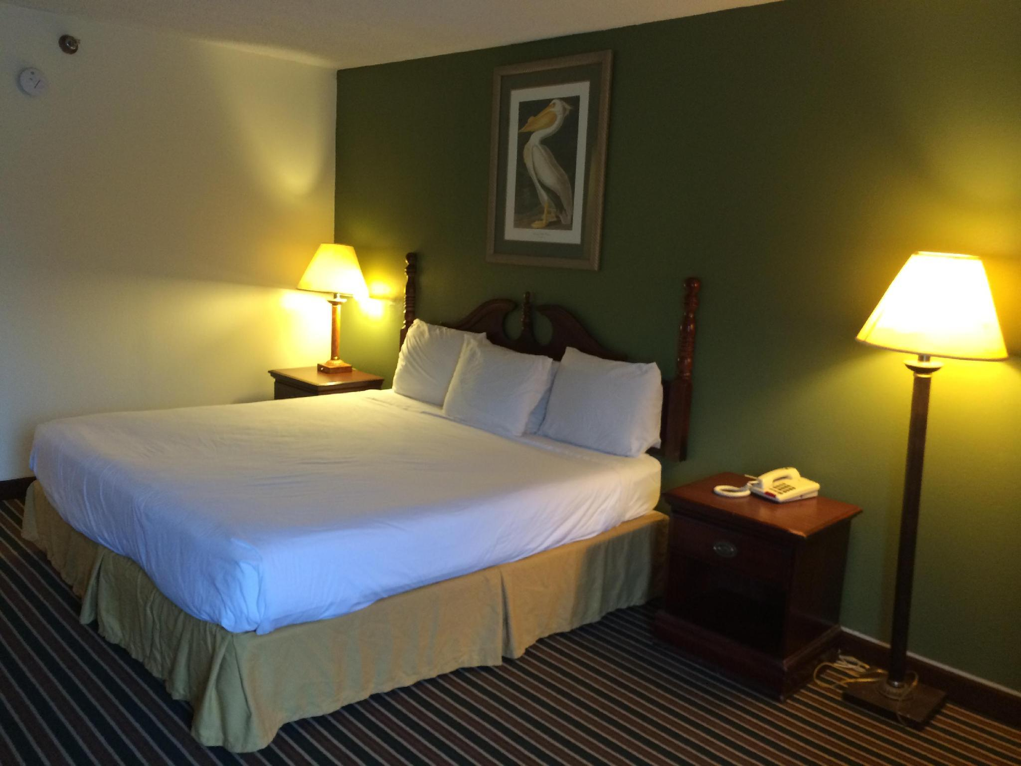Executive Inn & Suites Baker Reviews
