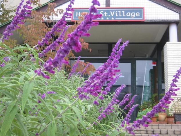 Hotel St. Village