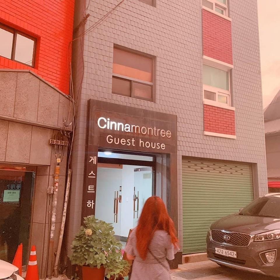 Cinnamon Tree Guesthouse