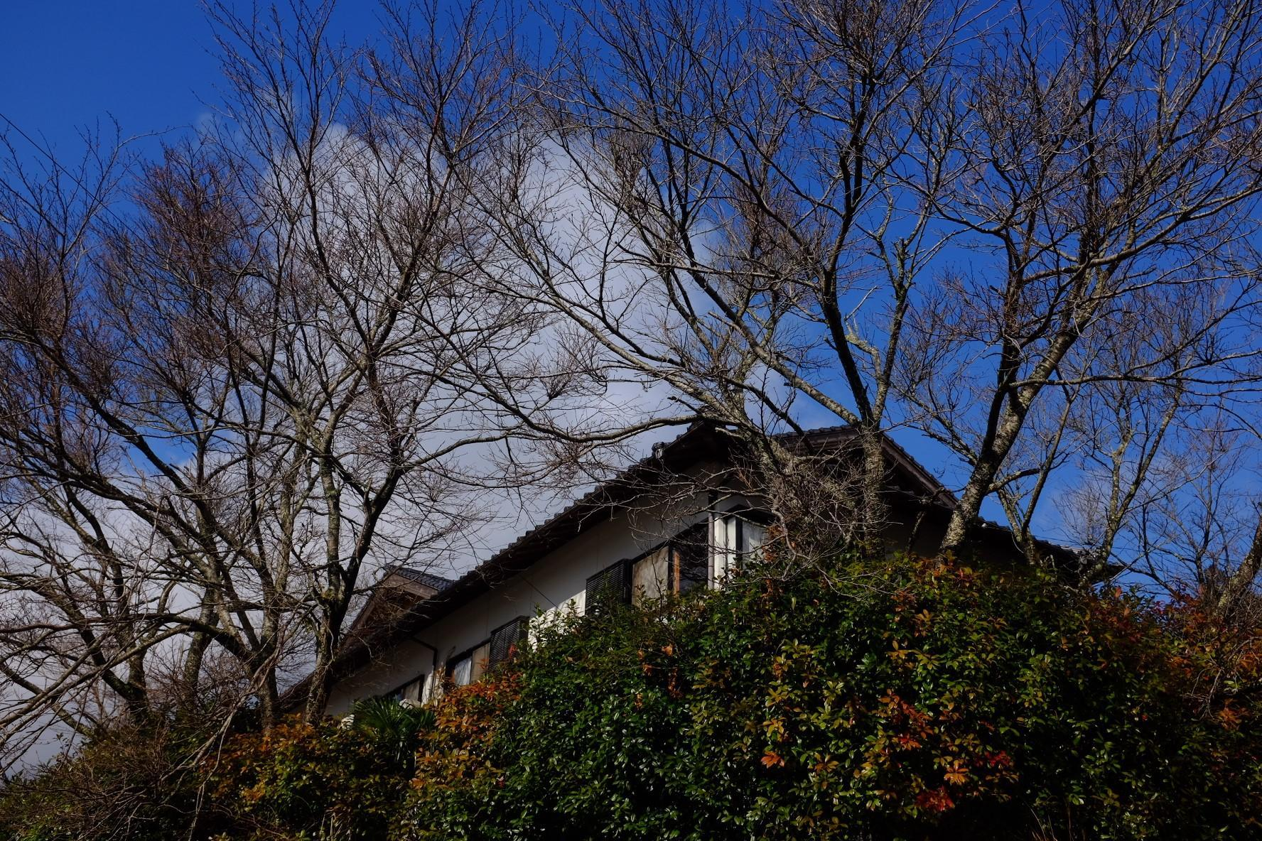 Japanese style House You  Can Enjoy A Hot Spring