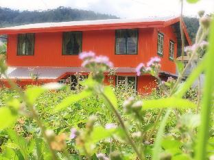 picture 2 of Baey Bogan Homestay