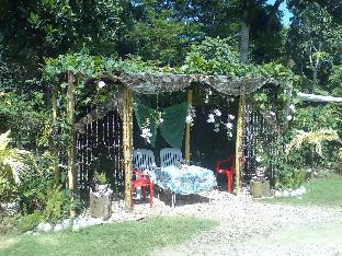 picture 1 of VIRGO's Place - A Deluxe Home away from Home l