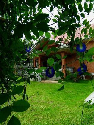 picture 1 of Nap Sack Anilao Batangas - Twin share room