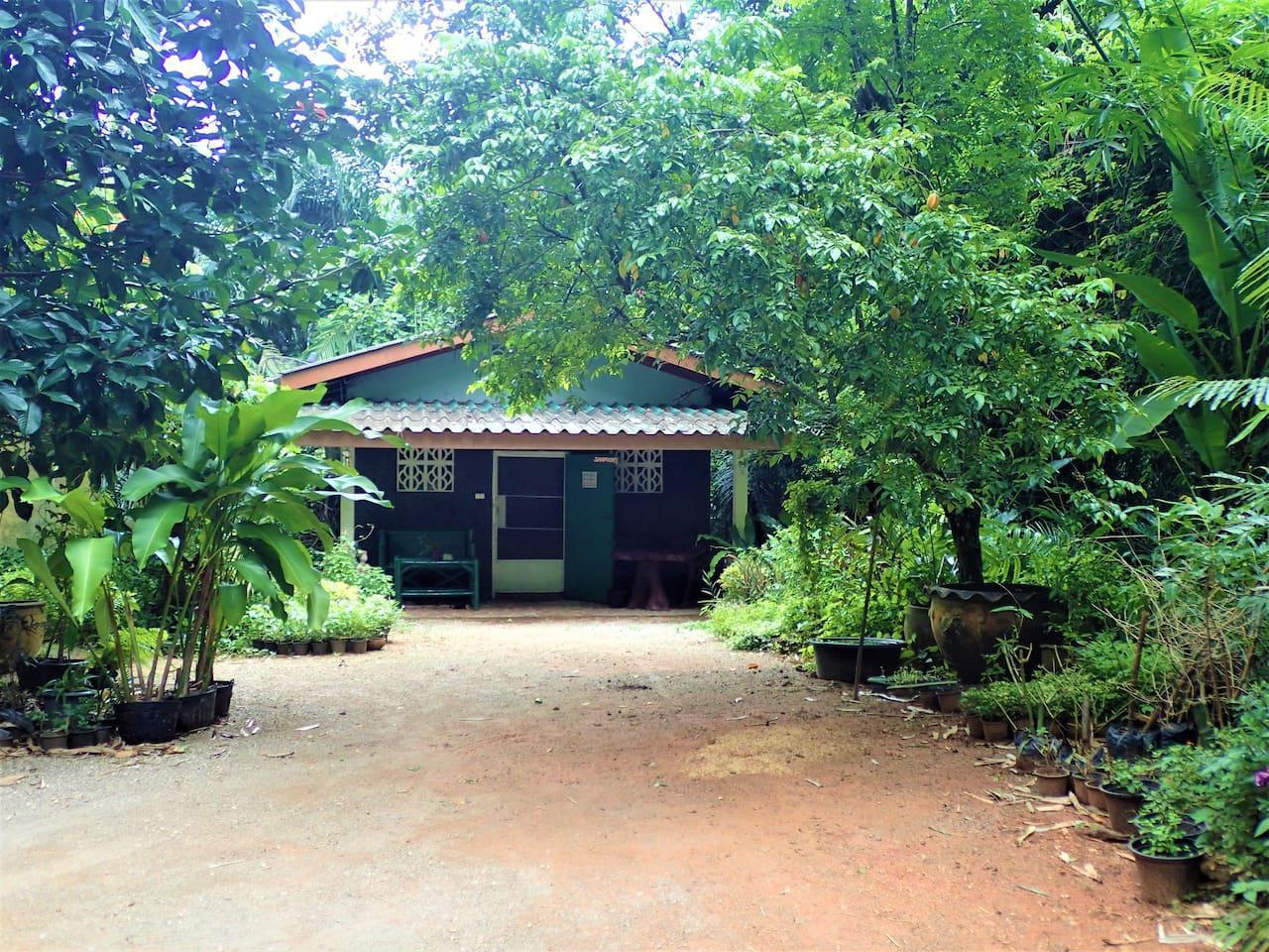 Authentic Thai Culture in Magical Garden Landscape บังกะโล 1 ห้องนอน 2 ห้องน้ำส่วนตัว ขนาด 50 ตร.ม. – อ่าวลึก