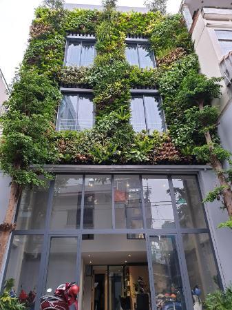 Tripporo Green house - Diamiond Studio  Ho Chi Minh City