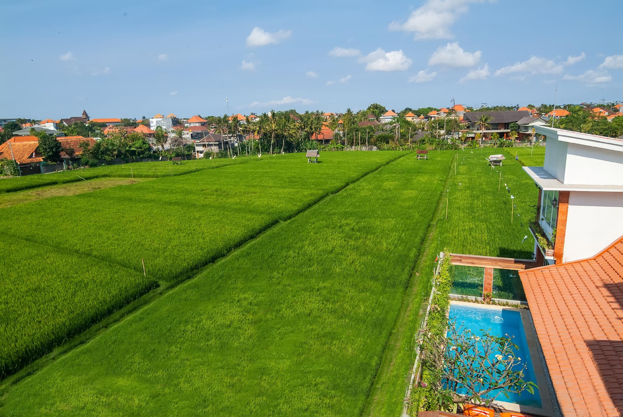 New!Rice field View, 2 mins to the beach - 3BR