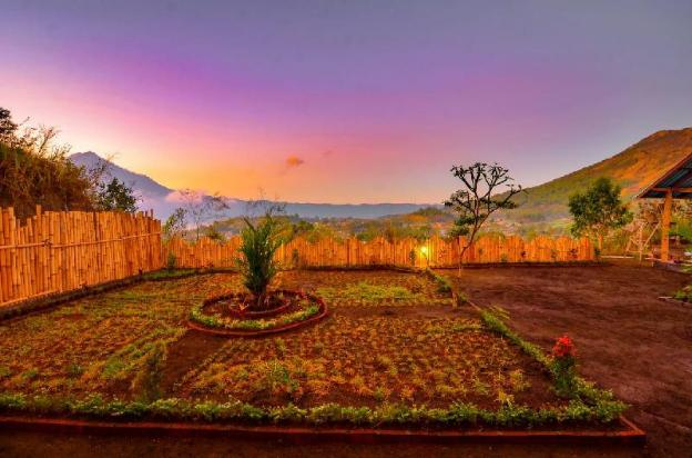 Bunbulan Landscape
